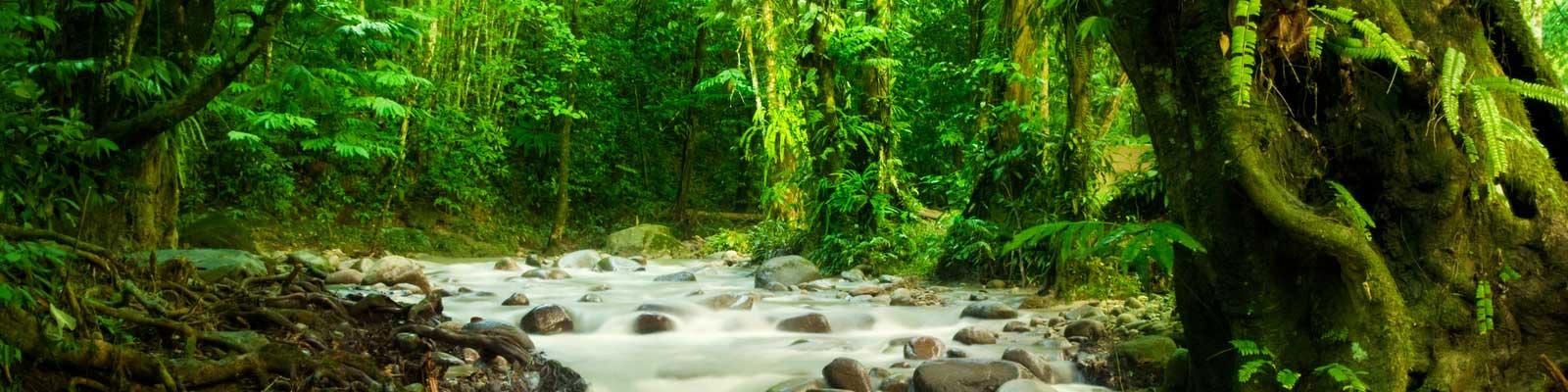 Costa Rica Novos Caminhos Compre, Venda. Vilas e Pousadas.