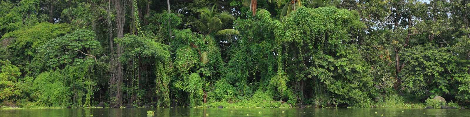 Nicaragua Lagos Florestas casas, apartamentos, vilas, duplex, andares.